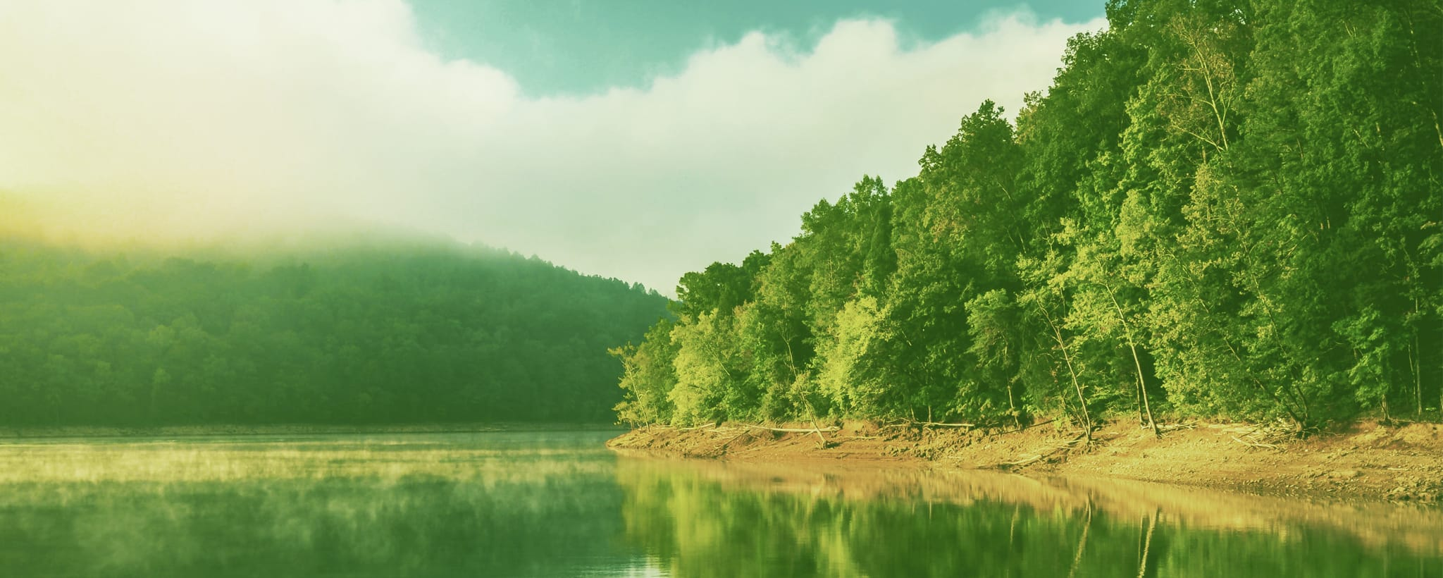 Environment - Lake Levels