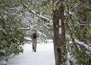 Winter Hiking Thumb